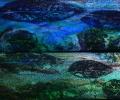 Leaf Fish - two panels